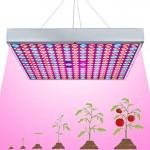 LED Ανάπτυξης Φυτών