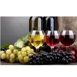 Κρασιά - Οινοπνευματώδη Ποτά