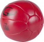 Ραφτή Medicine Ball 1Kg Amila-44511