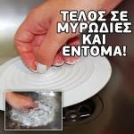 Βεντούζα Κάλυμμα Σιφονιών για Προστασία από Ανεπιθύμητες Οσμές & Έντομα