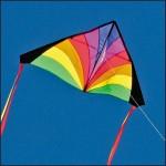 Χαρταετός Delta Vortex Υφασμάτινος για Φιγούρες & Ακροβατικά σε Πολλά Χρώματα & Σχέδια