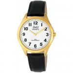 Ρολόι  Χειρός  Q&Q  C192J104Y