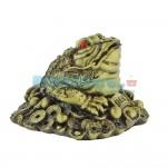Βάτραχος Αφθονίας και Πλούτου  11Χ10X8 cm