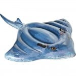 Φουσκωτό Θαλάσσης Stingray INTEX-57550