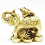 Βάτραχος πάνω σε Ελέφαντα για Επαγγελματική Επιτυχία και Πλούτο