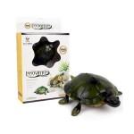 Τηλεκατευθυνόμενο Χελωνάκι - Innovation Tortoise - 9993