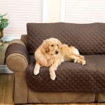 Πρακτικό Κάλυμμα Καναπέ 230x160cm 2 Όψεων Κατοικίδιων για Ανανέωση & Καθαριότητα - Sofa Safer
