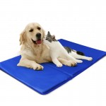 Στρώμα Ψύξης - Δροσιάς για Κατοικίδια Ζώα 40x50cm - Pet Cooling Mat Nobleza